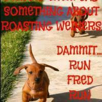 Run Fred Run